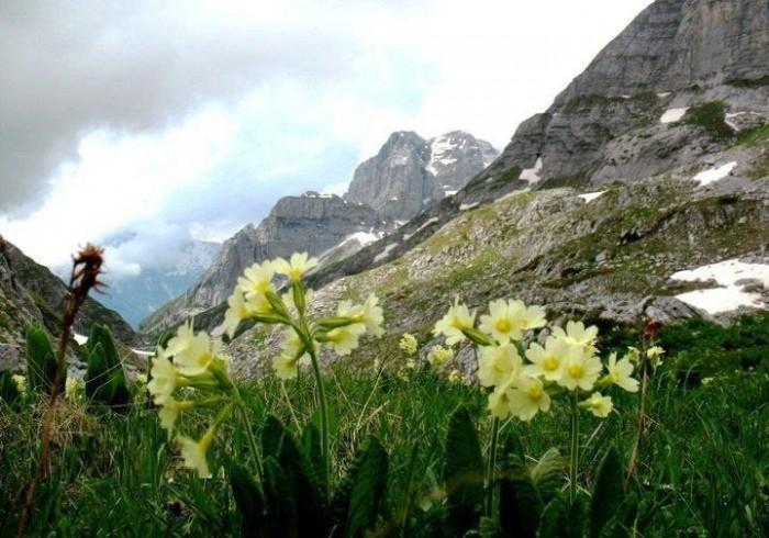 Pritshmëritë  dhe realizimi i tyre për sezonin pranverë-verë 2013