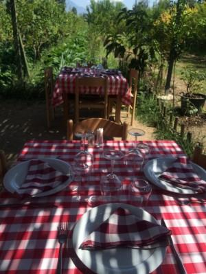 Uka Farm, agroturizmi qe lindi  nga shkenca