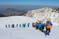Dymijëekatërmbëdhjeta ishte viti i Shqipërisë