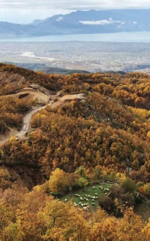 Zonat e Pambrojtura të Shqipërisë